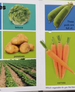A Lift a Flap book On the Farm Vegetables