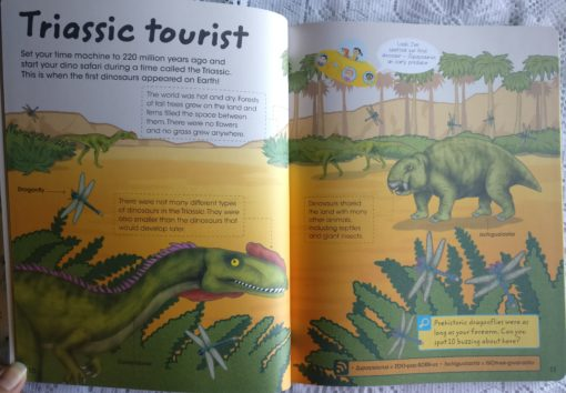 Factivity Dinosaurs Inside page 3