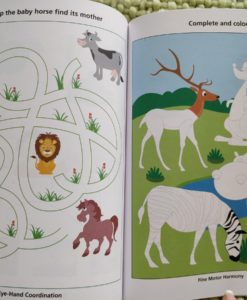 Preschool Success Skills – Brainy Kids Workbook – Level 2 – 4 years+ InsidePage6