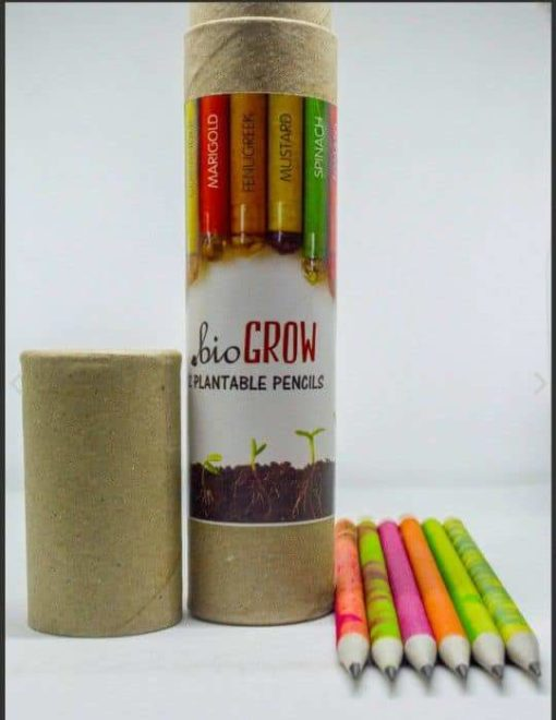 Eco-friendly Seed Pencils (Box of 12 HB pencils) - box and pencils view