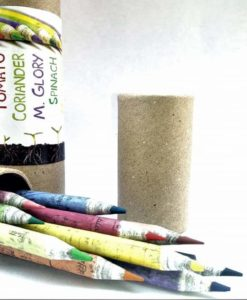 Eco-friendly Coloured Seed Pencils (Box of 10 coloured and 2 normal grey pencils) - box and pencils