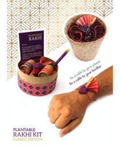 Eco-friendly Plantable Seed Rakhi Kit Classic Box rakhi tied on hand