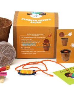 Eco-friendly Plantable Seed Rakhi kit