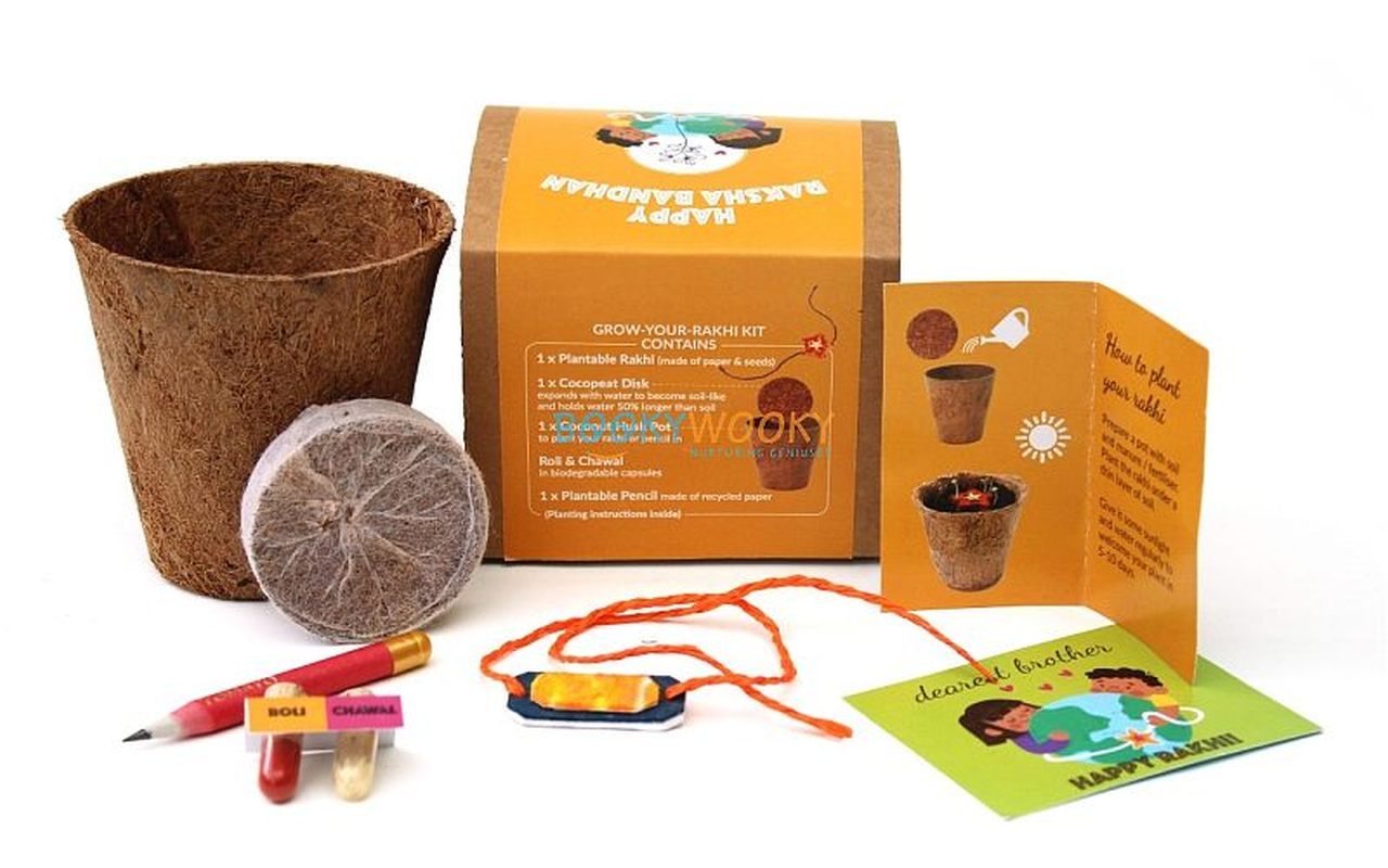 Eco-friendly Plantable Seed Rakhi kit
