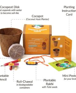 Eco-friendly-Plantable-Seed-Rakhi-kit-Contents