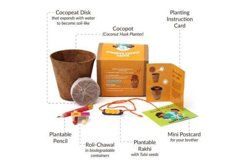 Eco-friendly-Plantable-Seed-Rakhi-kit-Contents
