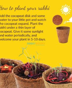 How to grow a plantable seed rakhi