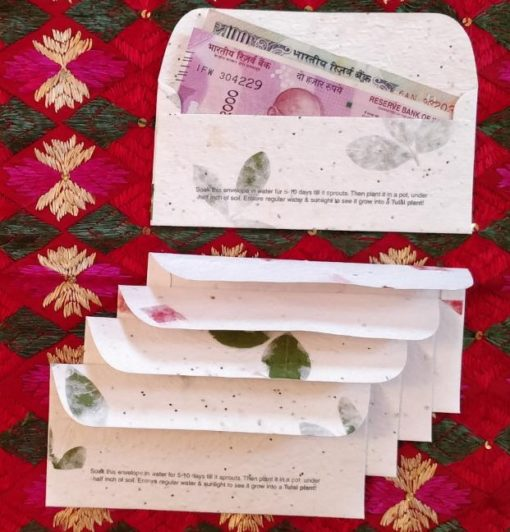 Seed Paper Gift Envelopes (Pack of 5)