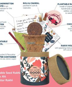 Plantable Seed Rakhi Classic Kit with Star Rakhi