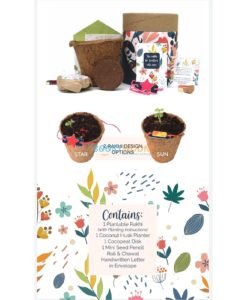 Plantable Seed Rakhi Classic Kit with contents