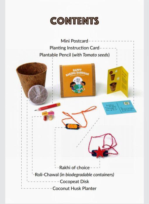 Plantable Seed Rakhi Kit 2020