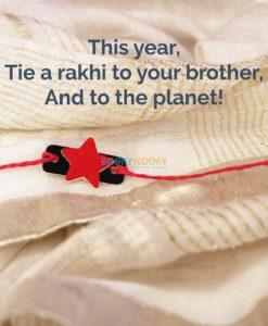 Seed Rakhi Star Shape rakhi dori