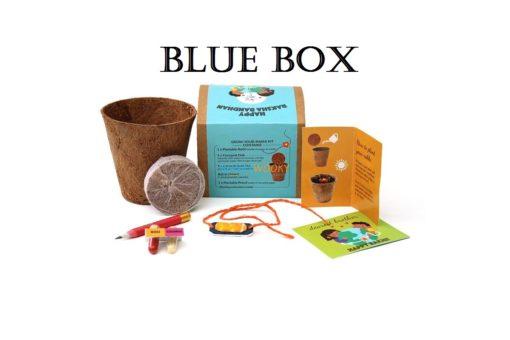 blue box with sun rakhi
