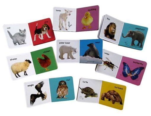 My Learning Library – Animals - All Open Books