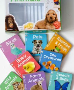 My Learning Library – Animals - All Books with box