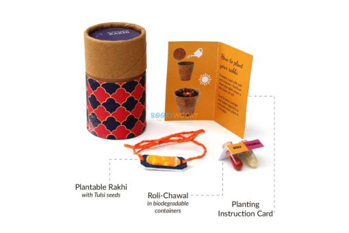 Eco-friendly Plantable Seed Rakhi Solo Kit for Adults