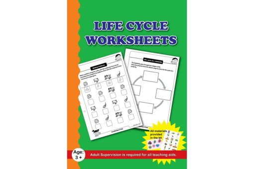 Life cycle Worksheets with Craft Material