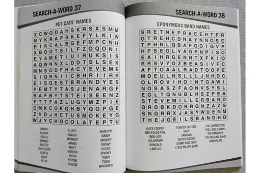 Puzzle Time Large Print Search a Word Red inside2