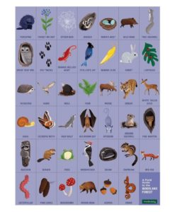 mudpuppy woodland forest search find puzzle 9780735355798 - field guide