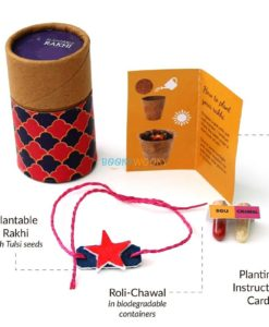 Eco-friendly Plantable Rakhi with Seeds Solo Kit Star Shape for Kids