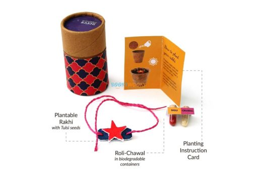 Eco-friendly Plantable Rakhi with Seeds Solo Kit Star Shape for Kids
