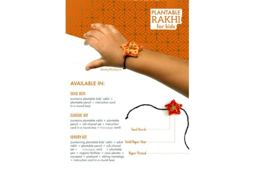 Eco-friendly Seed Rakhi Solo Kit for Kids details and options