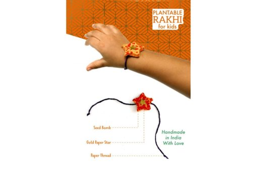 Eco-friendly Seed Rakhi Solo Kit for Kids