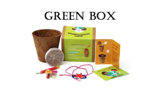 Eco-friendly Plantable Seed Rakhi kit Star with Green box