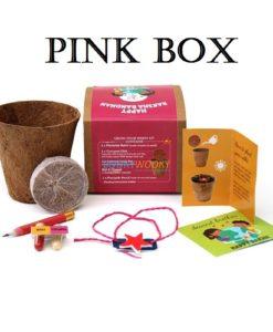 Pink Box with Star Rakhi