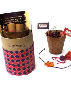 Plantable Rakhi Luxury Kit for Kids main.jpg