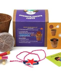 Plantable Rakhi with Seeds for Kids - Star Shape Purple Box