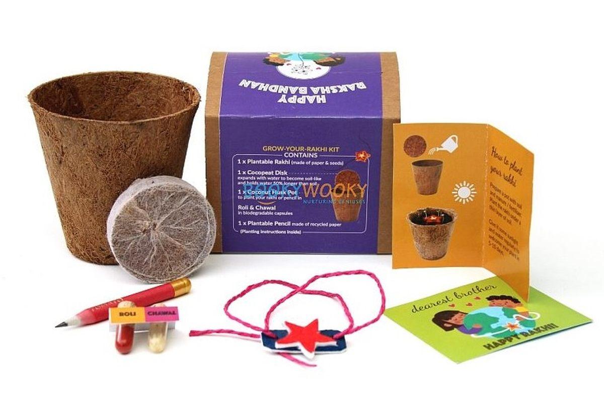Plantable Rakhi with Seeds for Kids - Star Shape Purple Box