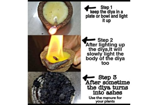 Diwali Diyas how to use (1)
