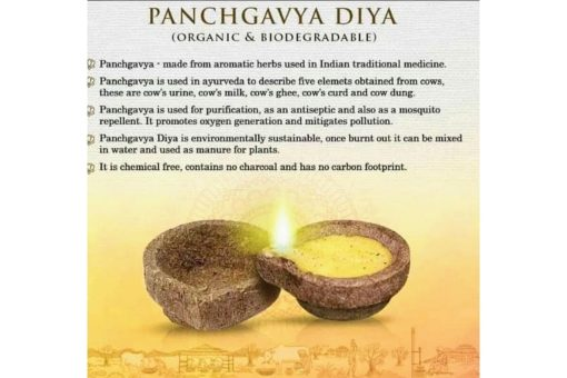 Eco friendly Diwali Diyas Panchgavya Diya Promotion