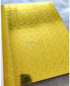My First Picture Dictionary 100 Gold Stars 9781474833790 stars