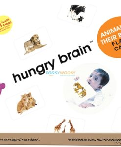 Animals & Their Babies Flashcards cover by Hungry Brain