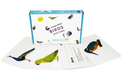 Birds Flashcards (1)