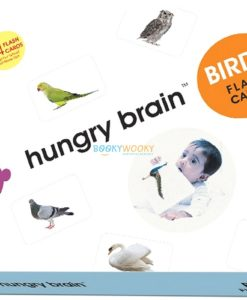 Birds Flashcards cover by Hungry Brain