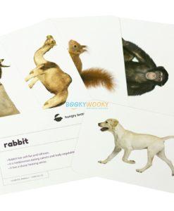 Domestic Animals Flashcards (2)
