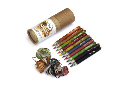 Eco-friendly Coloured Seed Pencils (10 mini) (1)