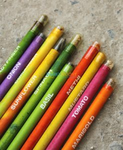 Eco-friendly Coloured Seed Pencils (Box of 10 coloured pencils) - 2 (2)