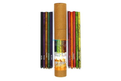 Eco-friendly Coloured Seed Pencils (Box of 10 coloured pencils) main