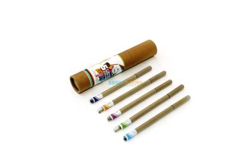 Eco-friendly Coloured Seed Pens (Box of 5) main
