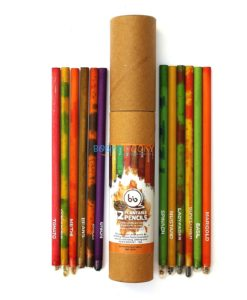 Eco-friendly Seed Pencils (Box of 12 HB pencils) main