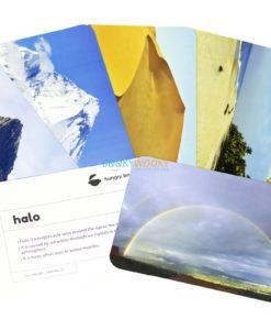 Still Nature Flashcards (2)