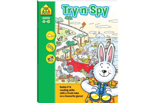 Try N Spy Activity Book 9781743637869