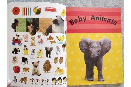 1001 Stickers Amazing Animals (2)