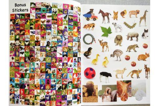 1001 Stickers Amazing Animals (5)