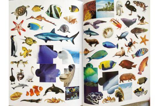 1001 Stickers Amazing Animals (9)