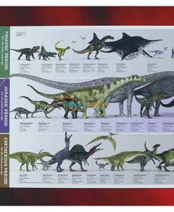 500 Piece Jigsaw Puzzle Dinosaurs back cover
